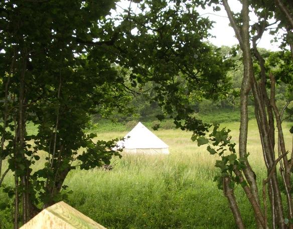 Bell Tent in Meadow