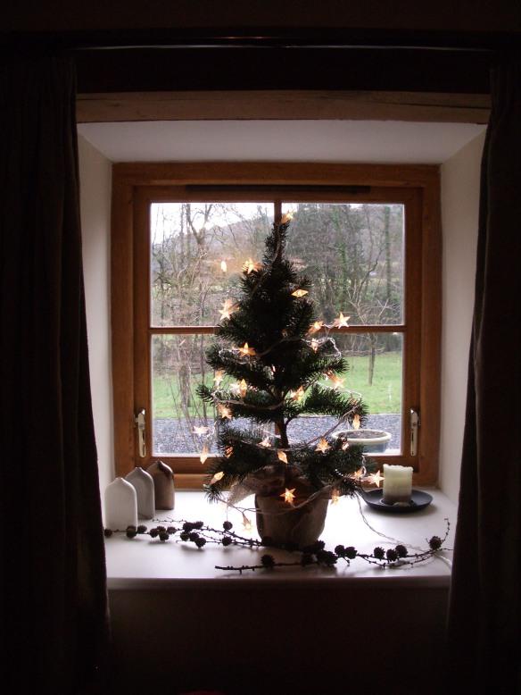 December Xmas tree Felin Fach