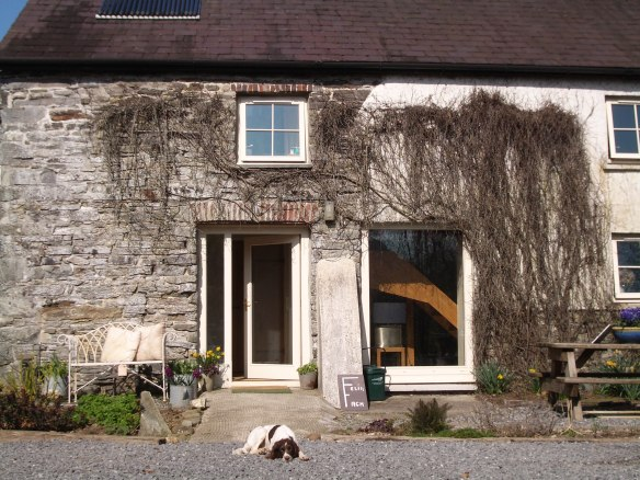 Felin Fach dog friendly
