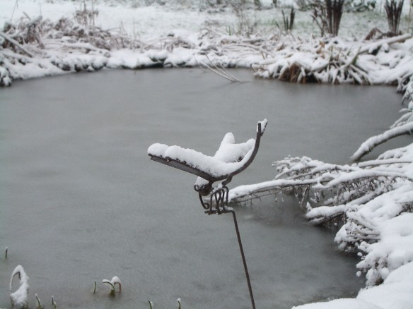 jan Snow 4