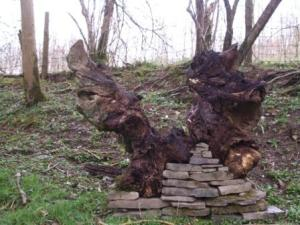 photos for blog stump sculpture